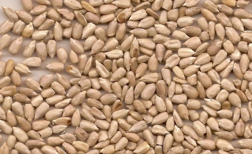 Sunflower Kernels (Ядро подсолнечника)