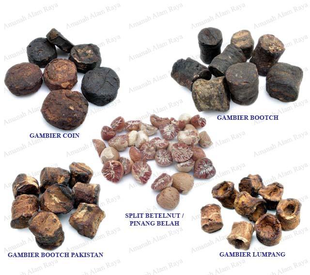 Gambier And Betel Nut (Gambier И бетель)