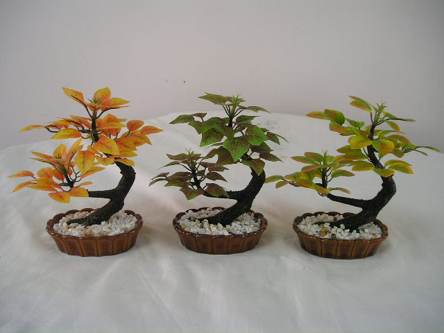 Bonsai Tree (Бонсай)