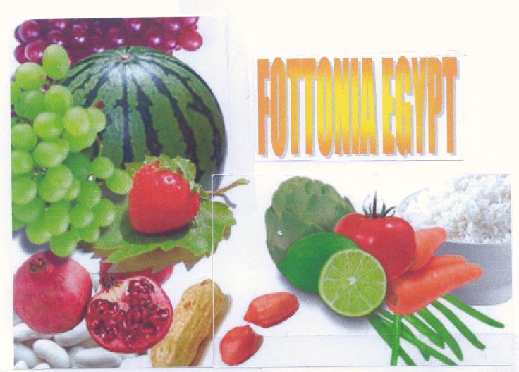 Vegetables, Fresh Fruit (Légumes, fruits frais)