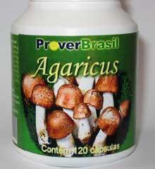 Agaricus Mushroom (Шампиньон Mushroom)