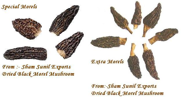 Dried Morels (Сушеные Сморчки)