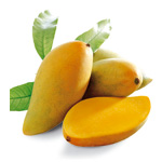 Mango (Mango)