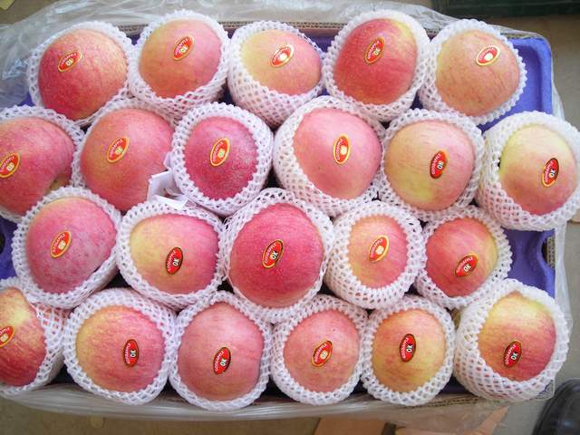 Fruit (Fruit)