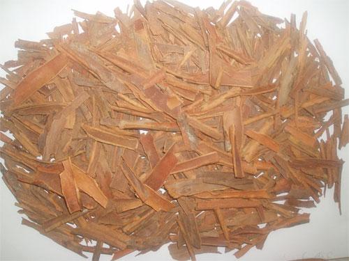 Cassia / Cinnamon (Cassia / Корица)