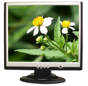 17 Inch LCD Monitor (17 дюймовый ЖК-монитор)