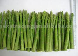 IQF Green Asparagus (IQF зеленой спаржей)