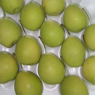 Shandong Pears (Шаньдун Груши)