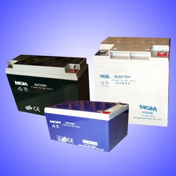 Electrical Vehicle Battery (Электрический аккумулятор транспортного средства)