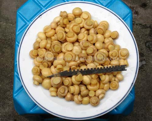 Salted Mushroom (Соленые грибы)