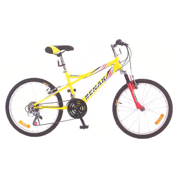Mountain Bike (Горный велосипед)