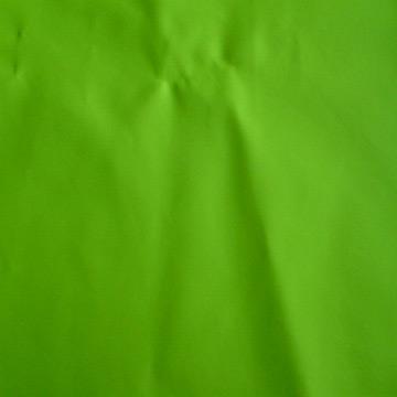 Fluorescence PU Leather for Rain Coat (Флуоресценция PU кожа для пальто дождя)