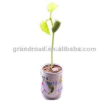 Seeding Can (Может Сеялки)