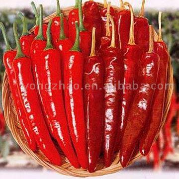 Dried Chilli (Сушеные чили)