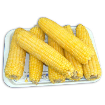 Frozen Glutinous Maize (Frozen gluant Maïs)