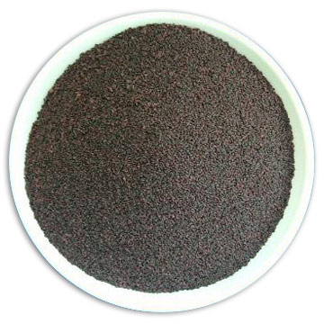 Black Currant Seeds (Cassis Seeds)