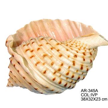 23cm Shell Planter (23см Shell Planter)
