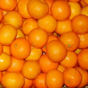 Fresh Mandarin Orange (Lokam)