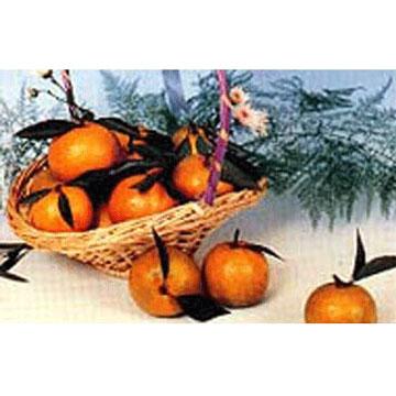 Chiao Oranges (Чао Апельсины)