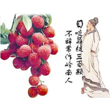 Fresh Lychees (Свежие личи)