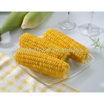 Frozen Whole Sweet Corns (Замороженные целые Sw t мозоли)