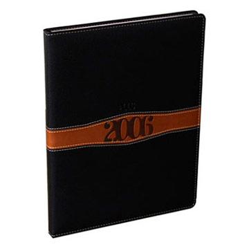 2006 Diary (2006 Diary)