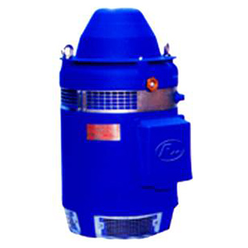 Series OHS Vertical Hollow-Shaft Motor (wp-1)