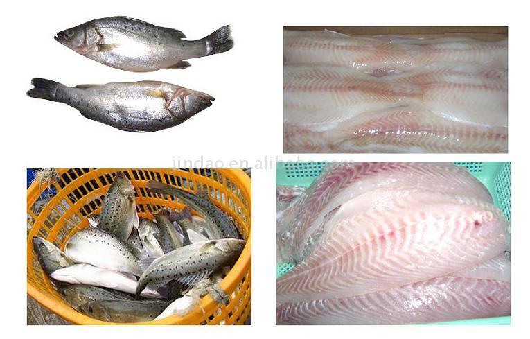 Seabass Fillet (Морской окунь филе)