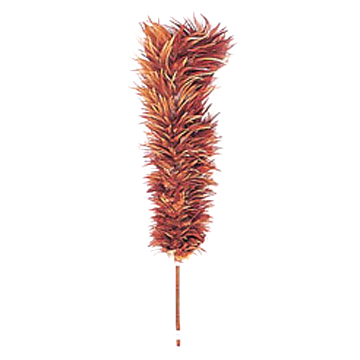 Feather_Duster.jpg