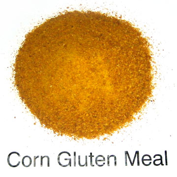 Corn Gluten Meal (Кукурузного глютена Питания)