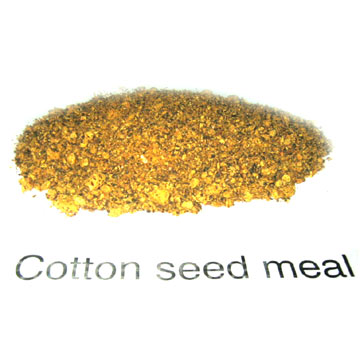 Cottonseed Meal (Хлопковое Питания)