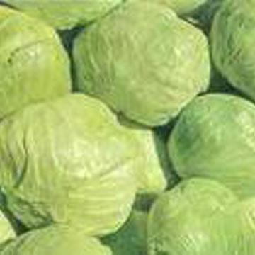Cabbages (Choux)