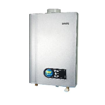 Gas Water Heater (Balance Type) (Газ водонагреватель (баланс тип))