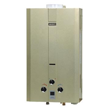 Gas Water Heater (Duct Exhaust Type) (Газ водонагреватель (Выхлопные трубы типа))