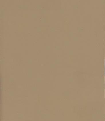 Bronze Glass (Tinted) (Бронзовая стекло (тонировка))