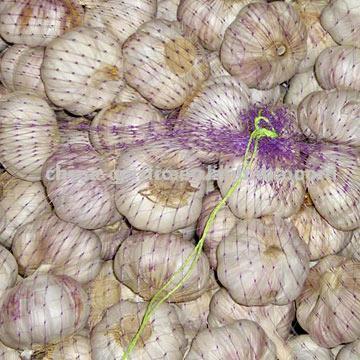 China Garlic (Китай Чеснок)