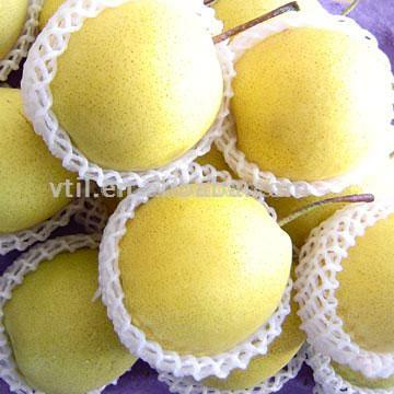 Shandong Pear (Шаньдун груша)
