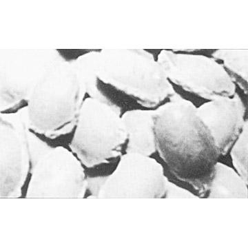 Caustic Calcined Magnesite Briquettes (Каустик кальцинированный магнезит брикеты)