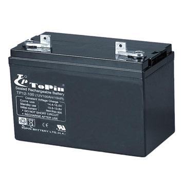 Sealed Lead-Acid Battery (Герметичный свинцово-кислотный аккумулятор)