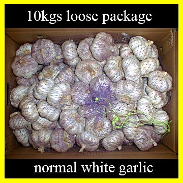 Normal White Garlic (Hybrid Garlic) (Нормальный белый чеснок (Hybrid чеснок))