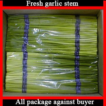 Garlic Stems (Чеснок Стебли)