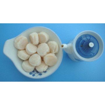 Boiled Sea Scallops Adductors (Вареные морские гребешки сведения)