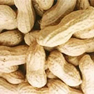 Peanuts in Shell (Арахис в Shell)