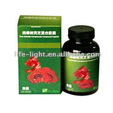 Pure Antrodia Camphorate Compound Capsule