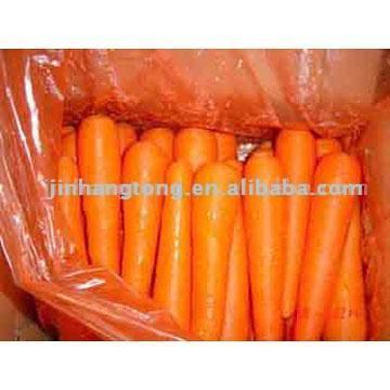 Fresh Preserved Carrot