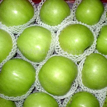 Green Apples ( Green Apples)