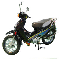 LPG Scooter (СНГ Scooter)