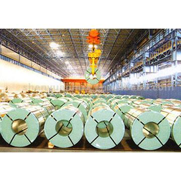 Galvanized Sheet in Coil (Galvanized Sheet dans les bobines)