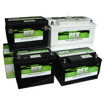 Automotive Battery (Sealed Maintenance Free Type) (Автомобильные аккумуляторы (Sealed Maintenance Fr  тип))