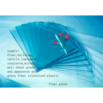 Float Glass and Glass